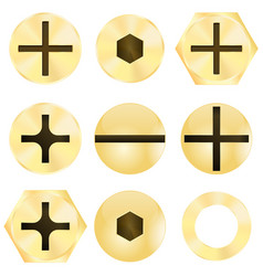Bronze screw head vector
