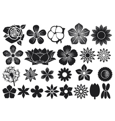 Collection flowers vector