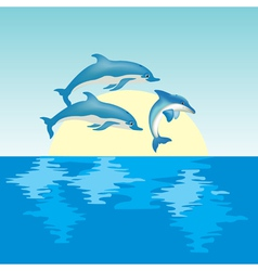dolphin on sunrise vector image