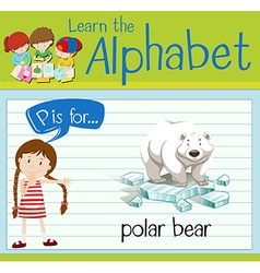 Flashcard letter P is for polar bear vector
