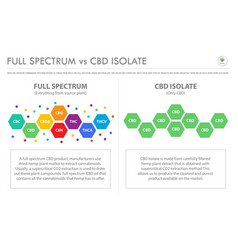Full spectrum vs cbd isolate horizontal business vector