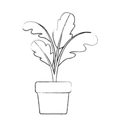 monochrome blurred silhouette of beet plant in vector image