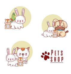 pet shop cute cartoons vector image