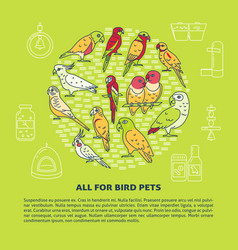 Pet shop round concept banner with parrot icons in vector