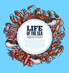 poster sea life ocean fish sketch animals vector image
