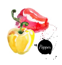 Red and yellow peppers Hand drawn watercolor vector