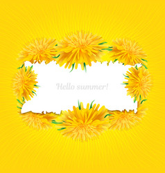 summer card dandelions isolated yellow sun vector image