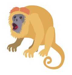 surprised monkey icon cartoon style vector image