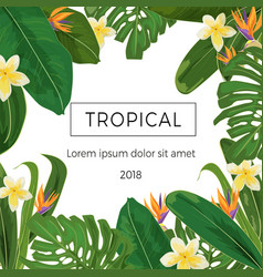 template with tropic plants and flowersand place vector image