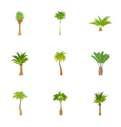 Types of palm icons set cartoon style vector