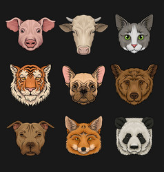 Wild and domestic animals set heads of pig cow vector