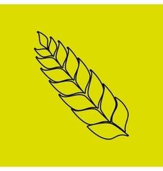 barley icon design vector image vector image