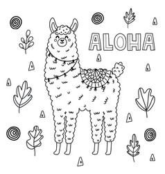 coloring page for adults and kids with funny llama vector image