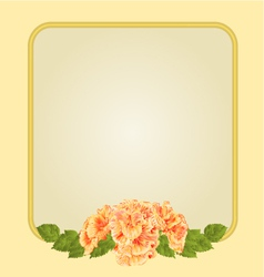 Golden frame with yellow hibiscus greeting card vector