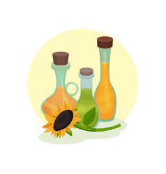 natural rapeseed sunflower and olive oil glass vector image