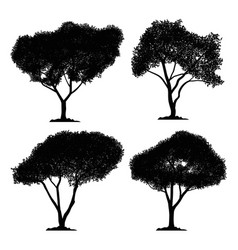 silhouette tree set and isolated black forest vector image