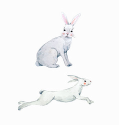 Watercolor rabbit set vector