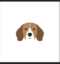 beagle head isolated on white background vector image vector image