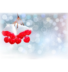 Holiday background with Christmas branch with red vector image vector image
