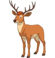 Adult funny deer vector image