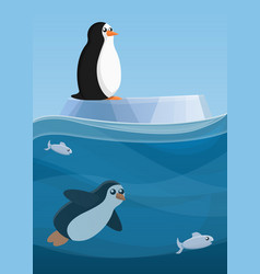 arctic penguin concept banner cartoon style vector image