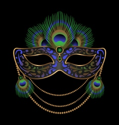 carnival mask decorated with peacock feathers vector image
