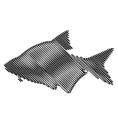 Common bream silhouette vector
