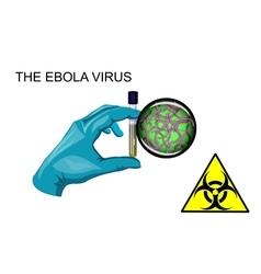 Ebola virus biohazard vector image