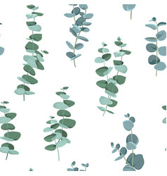 Eucalyptus seamless pattern in rustic style on vector