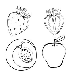 Fresh and healthy fruits vector