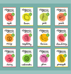 fruits and berries labels hand drawn healthy vector image