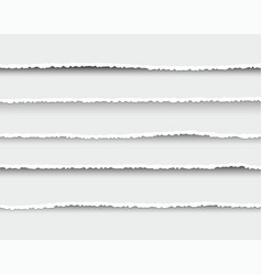 set of oblong layers of torn white paper vector image