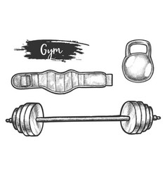 sketch powerlifting or weightlifting equipment vector image