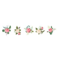 vintage floral bouquet set garden pink and vector image