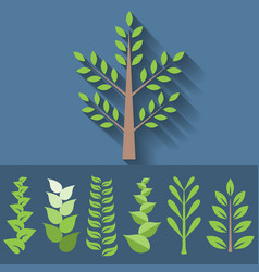 set of different leave branch for decoration vector image