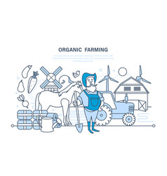 organic farming cultivation of natural products vector image