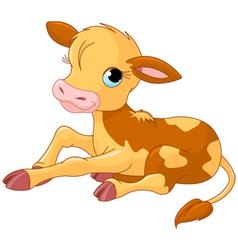 cartoon baby calf vector image vector image