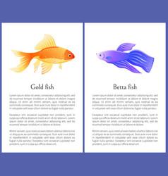 Aquarium gold fish and betta fish view on banner vector
