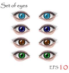 Beautiful female eyes vector