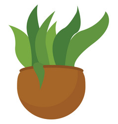 Clipart a green plant potted on a brown vector