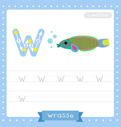 Letter w lowercase tracing practice worksheet of vector