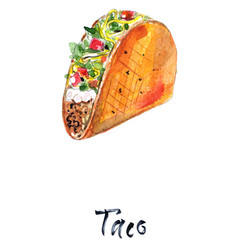 mexican taco with meat and vegetables vector image
