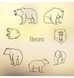 Set of different bears outline vector image