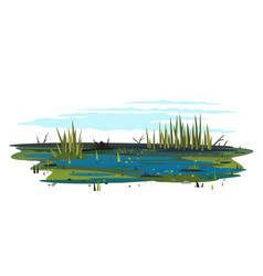 Swamp with bulrush plants isolated vector