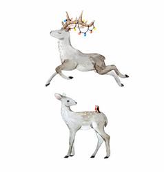 watercolor deer set vector image