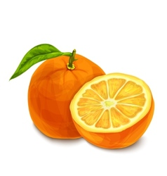 Orange isolated poster or emblem vector image vector image