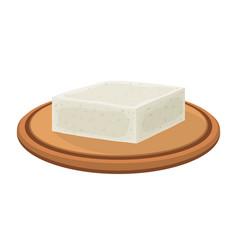 feta cheese on plate cartoon flat style vector image