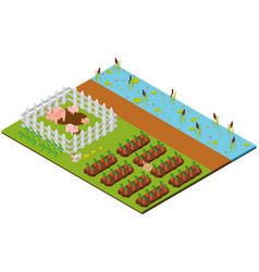 3d design for garden scene with pigs and carrots vector image
