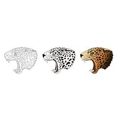 angry leopard portrait jaguar predator vector image