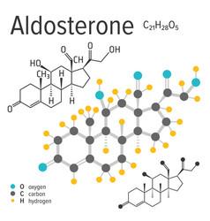Chemical formula of a aldosterone molecule vector